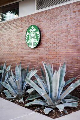 استارباکس لوگو ، قهوه استارباکس