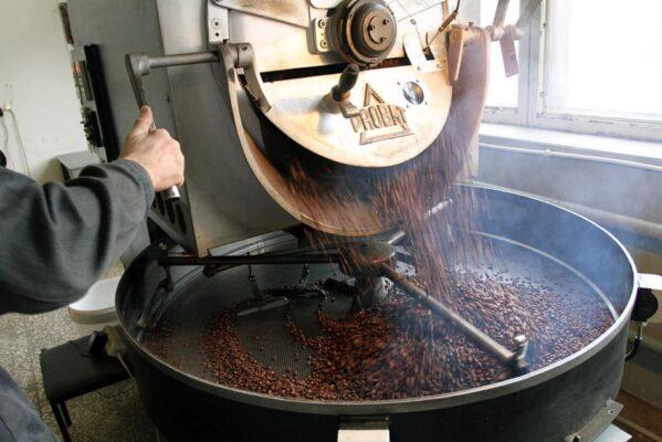 انواع قهوه عربیکا و روبوستا