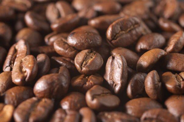 انواع قهوه عربیکا روبوستا